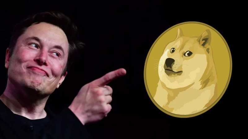 Dogecoin – History and Projections for the Future